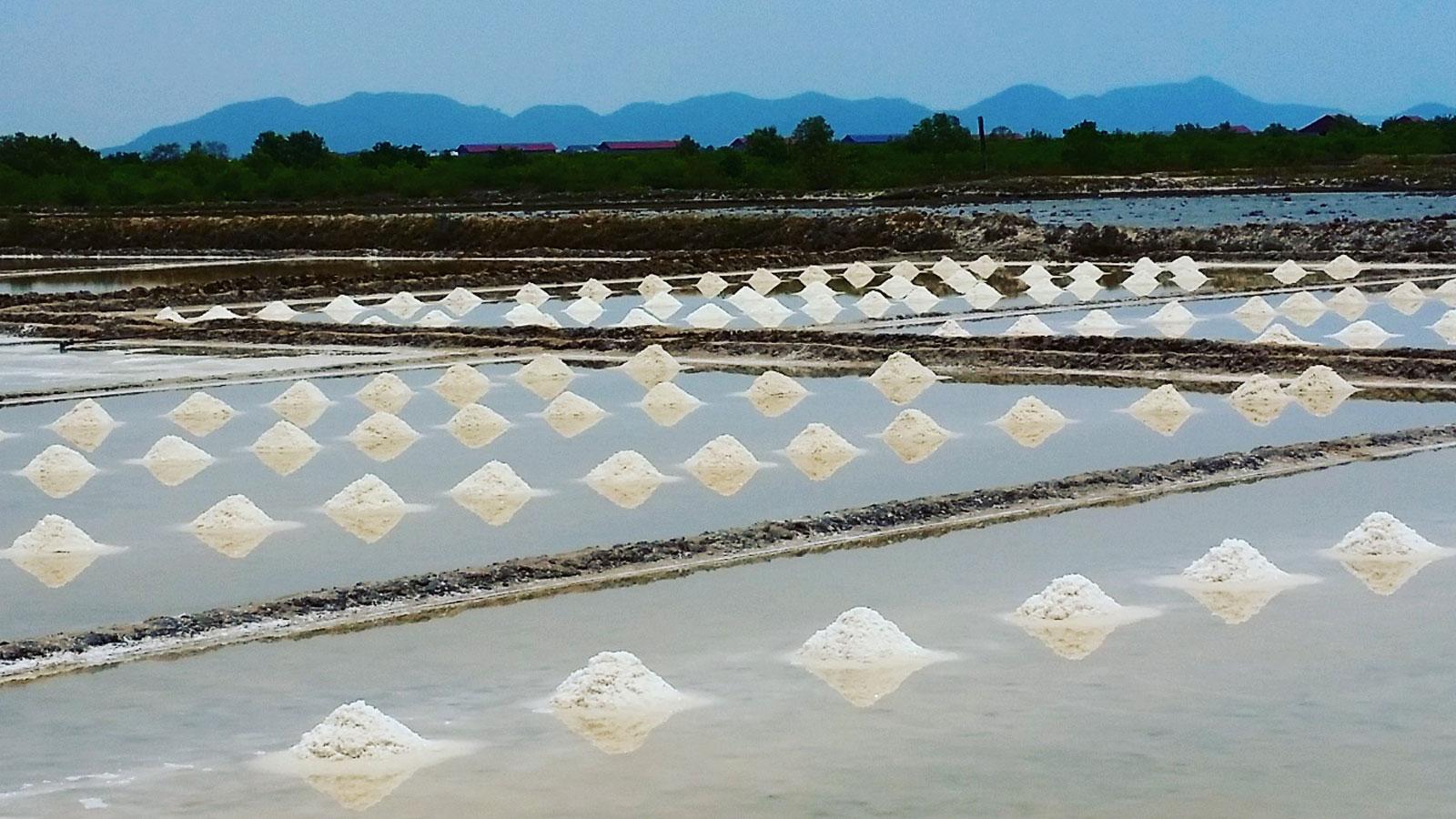 Salzfelder von Kampot
